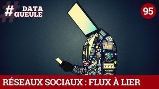 Réseaux sociaux : flux à lier - #DATAGUEULE 95