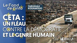 CETA : UN FLÉAU CONTRE LA DÉMOCRATIE ET LE GENRE HUMAIN