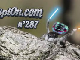 Le Zap de Spi0n n°287 - Zapping du Web